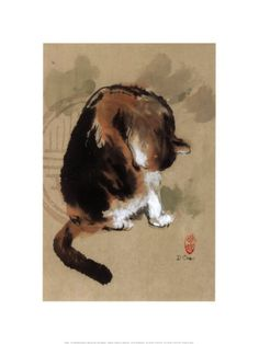 calico cat grooming itself