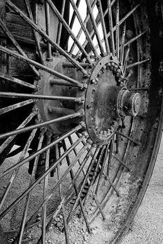 """Cart Wheel"" - © Insiya Dhatt (Flickr)"