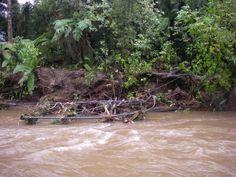 Flood Destroys Lewis River Bridge on Heaphy Track