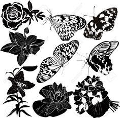 Sammlung Schmetterling Blume Lizenzfrei Nutzbare Vektorgrafiken, Clip Arts, Illustrationen. Image 17278181.