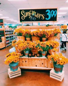 See more of happinessinpixels's VSCO. Merian, Happy Vibes, Summer Aesthetic, Aesthetic Yellow, Happy Colors, Mellow Yellow, My Sunshine, Pretty Flowers, Summer Vibes