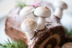 Yule Log Recipe: All of the components are so simple to make, and together they are truly unforgettable! Moist chocolate cake, spiraled around a fluffy chocolate whipped cream filling, and frosted with rich chocolate ganache. Such a gorgeous presentation! #yulelog #recipe #pagan #cake #decoration #traditional #easy #buchedenoel #christmas #centerpiece #chocolate #diy #howtomakea #filling #wintersolstice #mushrooms #classic #kids #whatisa #dessert #best #decorate #ganache #french #meringue… Chocolate Yule Log Recipe, Whipped Chocolate Ganache, Chocolate Log, White Chocolate Cupcakes, Chocolate Sponge Cake, Chocolate Filling, Chocolate Flavors, Pavlova, Meringue Suisse