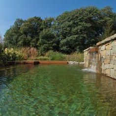 Lames d'eau, jets d'eau, gargouilles… Les piscines naturelles peuvent aussi être personnalisées. Baignades naturelles Bioteich.