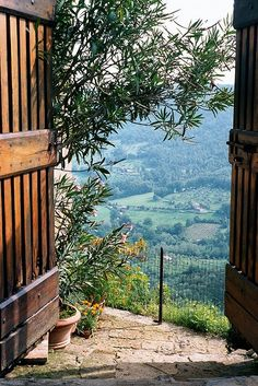 A Simple Life – the beginnings.  This is a breathtaking view.  Reminds me of my childhood in Italy.