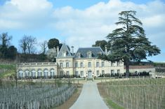 France: Chateau Fonplegade and the beautiful town of Saint-Emilion. Abandoned Castles, Abandoned Houses, Beautiful Places In The World, Beautiful Homes, Luxurious Bedrooms, Luxury Bedrooms, Modern Bedrooms, Patina Style, Limestone Wall