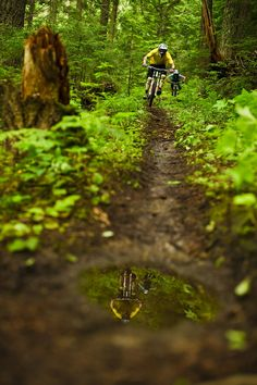 Single Track! #mtb #bicycle #cycling