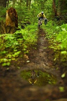 Single Track! #mtb #bicycle #cycling