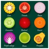 carrot adobe illustrations - Google Search