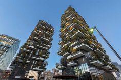 L'edificio più bello del mondo illuminato dai proiettori i-LèD Bosco Verticale (Milano, Italy)   Linea Light Group