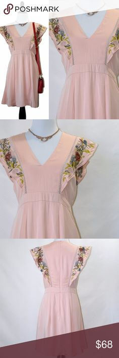 Foxiedox Anthro Embroidered Ruffled Pink Dress New, never worn, but hand-washed/ironed once (to remove a small stain) With tag  Light pink color Zip back closure, lined Soft full skirt fully lined Hand wash cold No care label Size small Foxiedox Dresses Mini