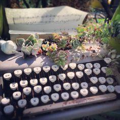 Old typewriter as planter. Typewriter, Succulents, Planters, Window, Gardening, Interior Design, Color, Inspiration, Ideas