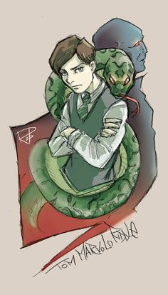 t.m riddle slytherin