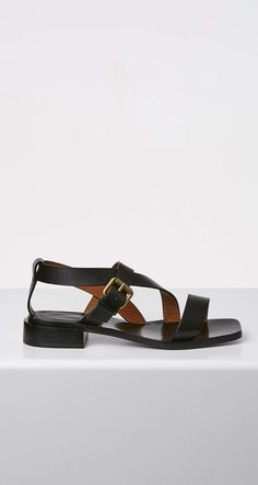Buckle Roman Sandal 2.5 - Scanlan Theodore 84c3f706d508