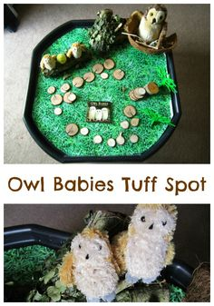 O is for Owl Babies Owl Babies Tuff Spot… Owl Activities, Nursery Activities, Autumn Activities, Infant Activities, Children Activities, Tuff Spot, Owl Babies, Baby Owls, Autumn Eyfs