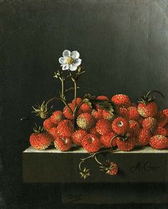 Adriaen Coorte (Dutch, Still life with wild strawberries, Oil on paper mounted on board. x 14 cm. Cabinet Royal des Peintures Mauritshuis, The Hague, Netherlands. Dutch Still Life, Still Life Art, Vanitas, Dutch Golden Age, Fruit Painting, Time Painting, Wild Strawberries, Dutch Painters, The Hague