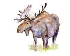 drawings of moose   Moose Watercolor painting. Art prin t. Moose painting. Limited edition ...