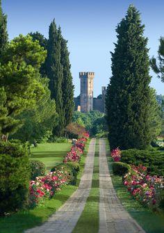 Viale delle Rose, Parco Giardino Sigurtà. Valeggio sul Mincio, Verona #Italy