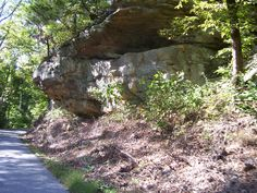 bluff in Giant City Park, southern Illinois