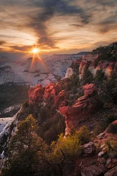 Zion National Park, Utah, by Jared Warren