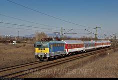 RailPictures.Net Photo: 431 156 Hungarian State Railways (MÁV) V43 at Hatvan, Hungary by Bíró Tamás