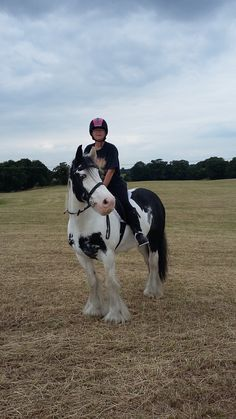 From Hilary, Crewe  | The Jacksons BIG Equestrian Picture Competition #horse #riding #equestrian