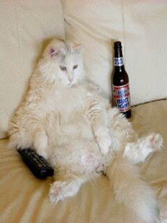 Nudy w tv