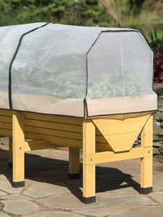 VegTrug™ Patio Garden Frame & Greenhouse Cover Elevated Garden Beds, Raised Garden Planters, Cedar Planters, Balcony Garden, Raised Garden Beds, Planter Boxes, Raised Gardens, Wooden Planters, Garden Spaces