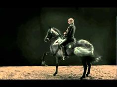 hermes horse video...beautiful.  Well hello, handsome;)