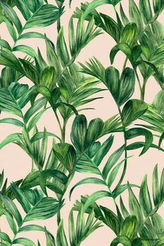 Tropical leaves by Urban WallArts Motif Tropical, Tropical Pattern, Tropical Vibes, Tropical Leaves, Tropical Prints, Palm Print, Green Pattern, Tumblr Wallpaper, Wallpaper Backgrounds