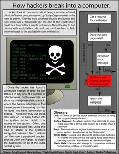 This infographic provides information for how hackers break into computers. It shows how hackers see computers and how they break computer codes. It also provides a glossary of terms used in the computer technology world. Computer Basics, Computer Coding, Computer Programming, Computer Hacking, Hacking Books, Programming Languages, Technology Hacks, Computer Technology, Computer Science