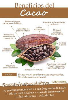 Hábitos Health Coaching | LOS BENEFICIOS DEL CACAO