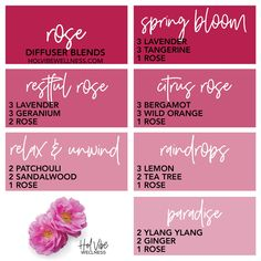 Essential Oil Candles, Essential Oil Perfume, Patchouli Essential Oil, Tea Tree Essential Oil, Essential Oils Guide, Doterra Essential Oils, Geranium Diffuser Blend, Easential Oils, Essential Oil Combinations