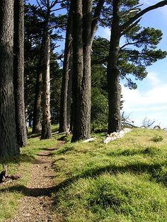 Tilden Regional Park: Berkeley, California
