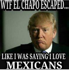 a78359749712caebd606a015637cc8b7 chapo guzman trump funny pull an el chapo and escape to atharv '15 to unleash your creative