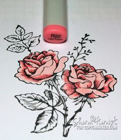 Coloring and shading flowers with Copics