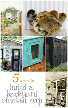 DIY Ideas | Have you ever dreamed of building your own backyard chicken coop and enjoying omelets with your own fresh eggs? Here are five inspiring DIY chicken coops for your backyard!