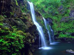 Waterfalls Maui Hawaii, Hana    Maui, known as the magic isle as well as the valley isle, is considered by many to be the most romantic island of the major Hawaiian Islands.