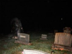 """Misty Figure Photographed in an Indiana Cemetery? A person who goes by """"JoScottWade"""" online, claims this picture was taken at Spice Valley Cemetery in Mitchell, Lawrence County, Indiana using a Sony..."""