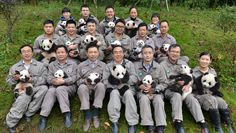 """awesome In a swipe at China, Macau's residents want to name the city's newborn panda twins """"corruption"""""""
