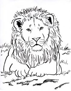 lion coloring pages to print | lion color page, tiger color page ...