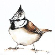 Karolina Kijak - Paintings for Sale Animal Paintings, Paintings For Sale, Animal Drawings, Watercolor Bird, Watercolor Illustration, Wildlife Art, Types Of Art, Bird Art, Pet Portraits