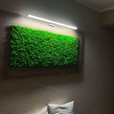 Facebook, Wood, Frame, Decor, Picture Frame, Decoration, Woodwind Instrument, Timber Wood, Trees