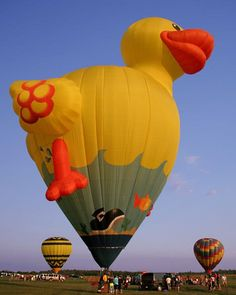 hot air duck baloon, sometimes you wonder how this kind of balloon was create and why.