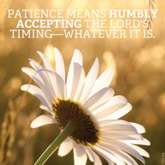 """""""Patience means humbly accepting the Lord's timing–whatever it is."""" #LDS"""