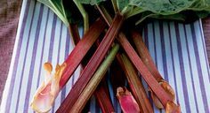 Rhubarb wilts quite quickly - store it in the fridge and eat within a couple of days.
