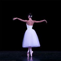 ZsaZsa Bellagio – Like No Other: Paris Opera Ballet Ballet Gif, Ballet Dance Videos, Ballet Dancers, Ballerinas, Dance Photos, Dance Pictures, Ballet Dance Photography, Paris Opera Ballet, Grace Beauty