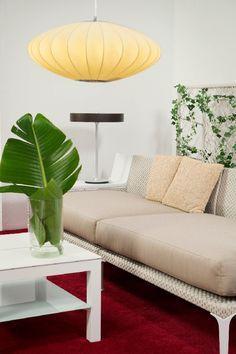 Eurolux Organo Pendant & Glass/Aluminium Table Lamp | VISI / Articles / Spring Co-op: Lounge