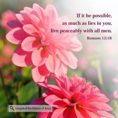 If it be possible, as much as lieth in you, live peaceably with all men. Romans 12:18