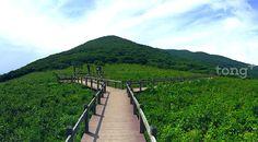 사진출처=환경부 Vineyard, Mountains, Nature, Travel, Outdoor, Korean, Outdoors, Naturaleza, Viajes