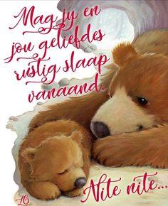 Good Night Sleep Tight, Good Morning Good Night, Afrikaanse Quotes, Goeie Nag, Good Night Quotes, Qoutes, Bible, Teddy Bear, Animals